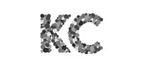 Kingston Communications